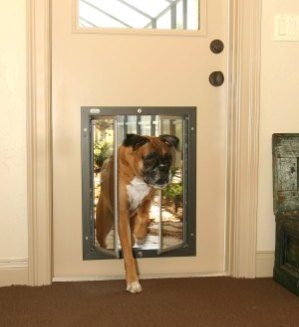 Plexidor Electronic Doors allow access only to pets wearing the RFID key & Plexidor Electronic Security and Animal Control - Overhead Door